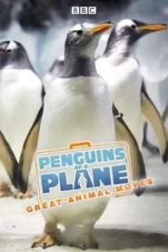 Penguins on a Plane Great Animal Moves Poster
