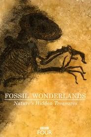Fossil Wonderlands Natures Hidden Treasures