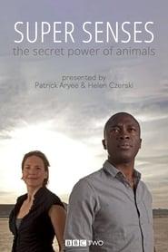 Super Senses The Secret Power of Animals Poster