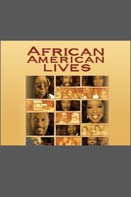 African American Lives Poster