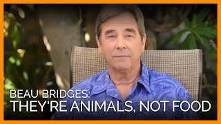 Beau Bridges on Ocean Creatures Theyre Sea Animals Not Seafood