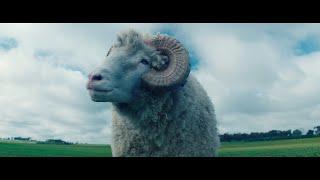Rams Official Trailer 2020