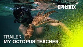 My Octopus Teacher Trailer CPHDOX 2020
