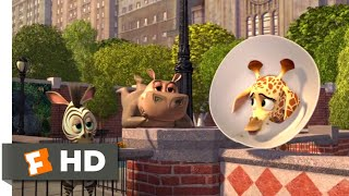 Madagascar Escape 2 Africa 2008 Baby Alex Goes to New York Scene 110 Movieclips