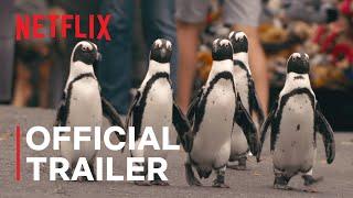 Penguin Town  Official Trailer  Netflix